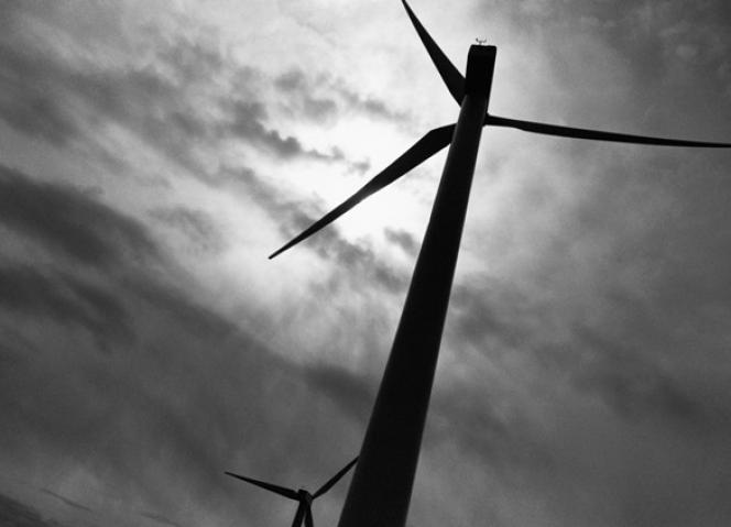 """Consulta Pública do """"Sobreequipamento do Parque Eólico de Arga – 2ª fase"""""""