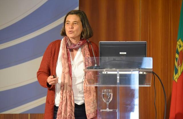 Ana Roque Oliveira, Investigadora