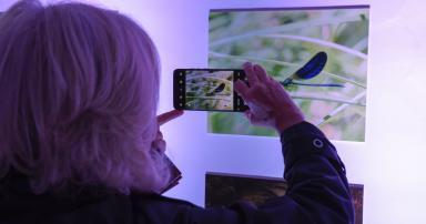 CCDR-N e MIRA FÓRUM inauguram exposição dedicada ao Gerês-Xurés na Galeria da Biodiversidade da UP